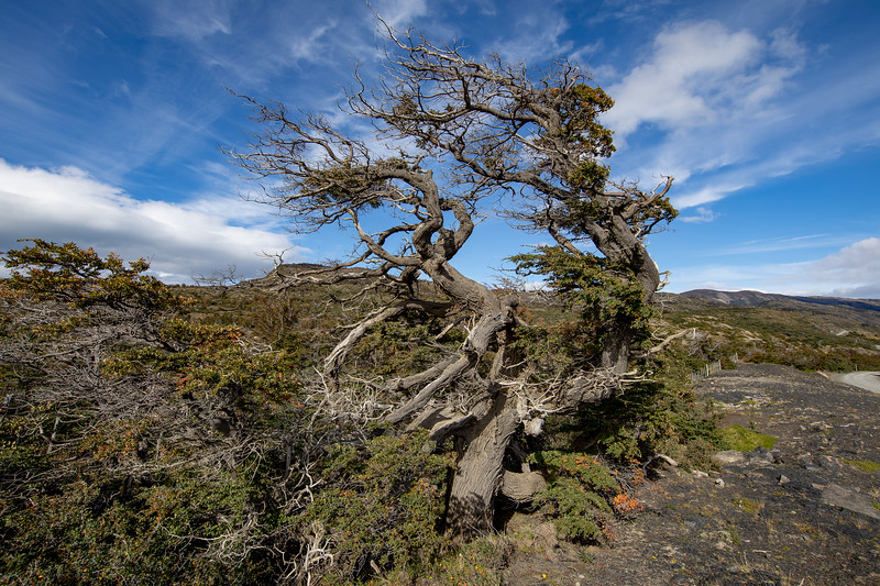 Strom Patagonie