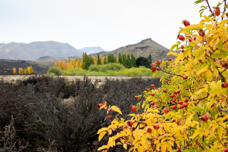 Podzim v Patagonii