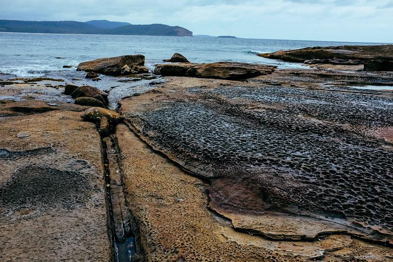 Murramurang National Park, South Coast NSW