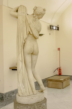 Callipygian Venus (or Venus of the beautiful buttocks). To me, it seems that this woman is checking out her butt.<br /> <br /> This Roman marble statue is thought to be a copy of an older Greek original.<br /> <br /> Archaeological Museum of Naples
