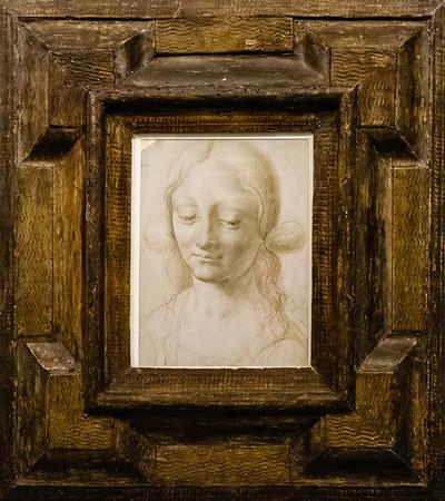 Head of a Woman - Master of the Sforza Pala - Rome - Galleria Borghese