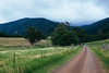 The path to Gulaga Mountain