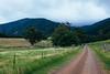 The path to Gulaga Mountain