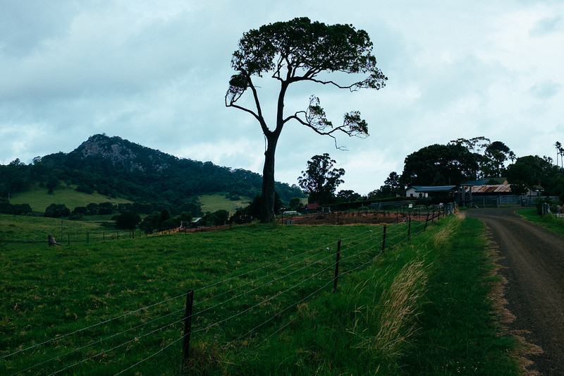 Mountain View Farm Cottages, Tilba Tilba