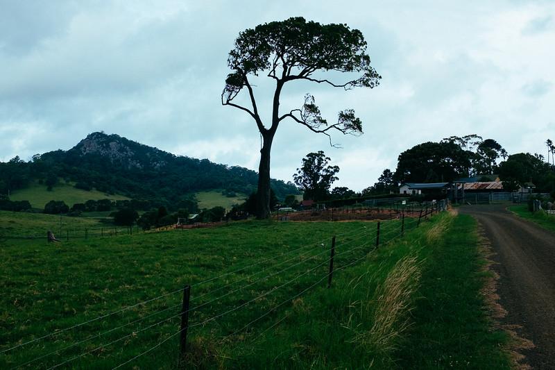 Mountain View Farm Cottages, Tilba Tilba