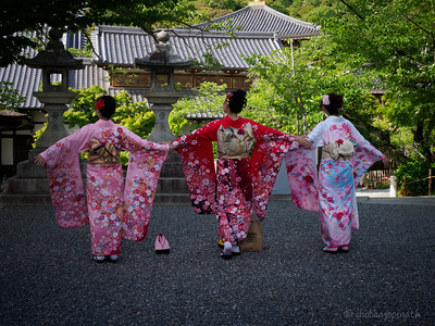 Lovely Japanese girls showing off their equally lovely kimonos