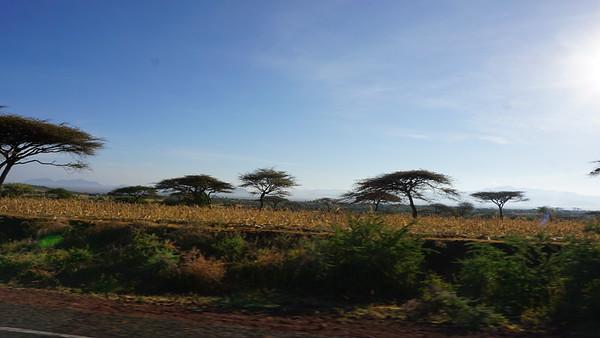 Rutherford 2018 Kenya