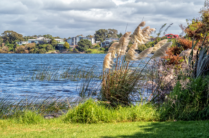 "2018-03-13 Sylvan Park, Auckland, New Zealand, 36°46'38"" S 174°46'6"" E"