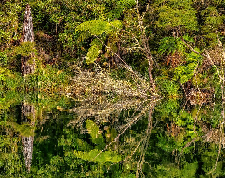 2018-03-15 On Lake Rotomahana, adjacent to Waimangu Volcanic Valley. New Zealand.
