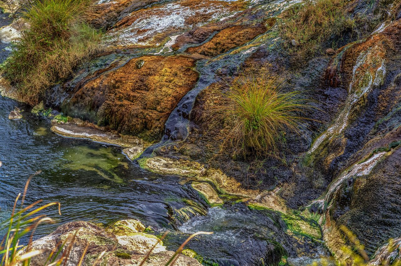 """2018-03-15 Waimangu Volcanic Valley, SE of Rotorua, New Zealand.  The area has a strong smell of sulfur. Coords: 38°16'59"""" S 176°23'59"""" E"""