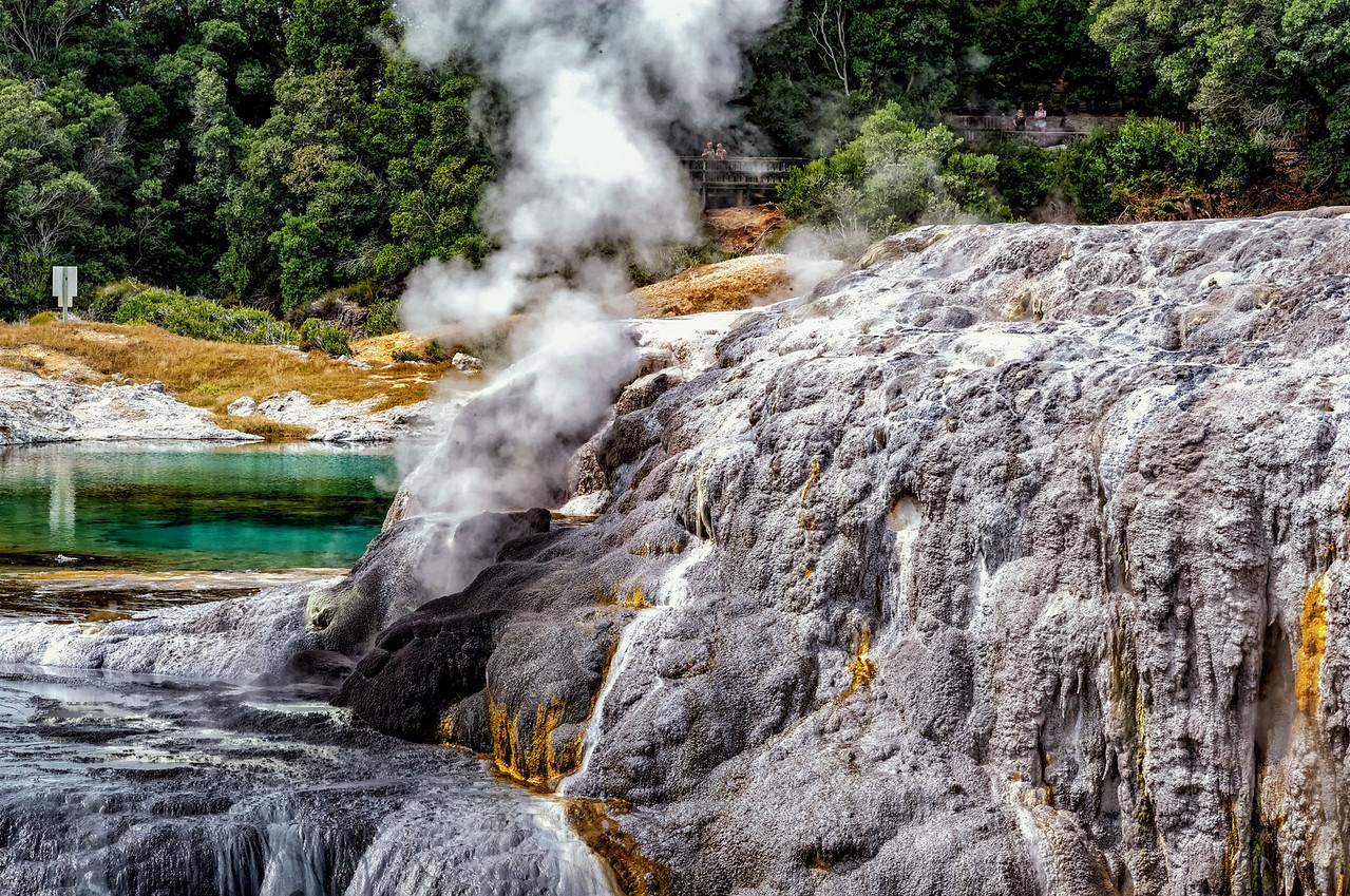 "3028-03-15 Whatarewarewa Volcanic Valley.  Coords: 38°9'48"" S 176°15'12"" E"