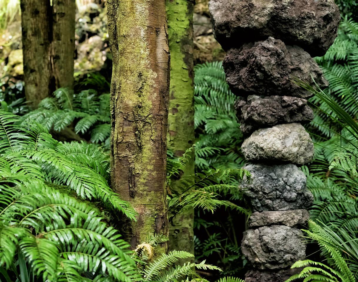 "2018-03-12 Eden Garden, Auckland, New Zealand. Coords: 36°52'34"" S 174°45'59"" E"