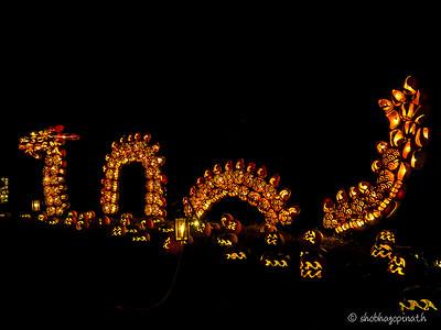 Pumpkin Dragon