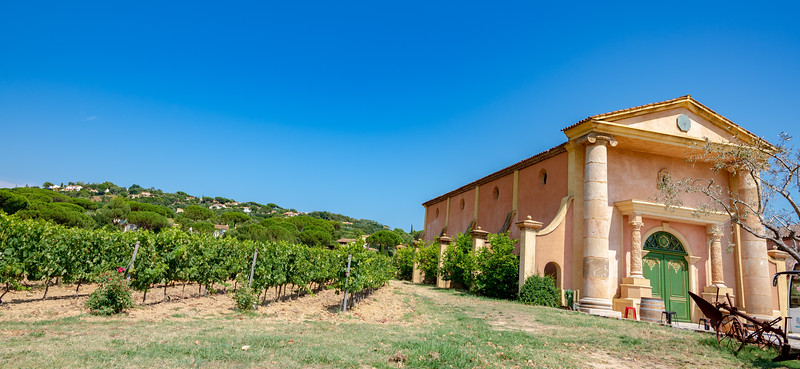 The Bertaud Belieu vineyard and winery, in Saint Tropez, France.