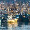 Galle Harbor-1