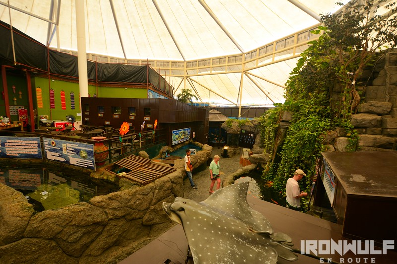 Open air section which includes the Touch Pools and Reptile zones