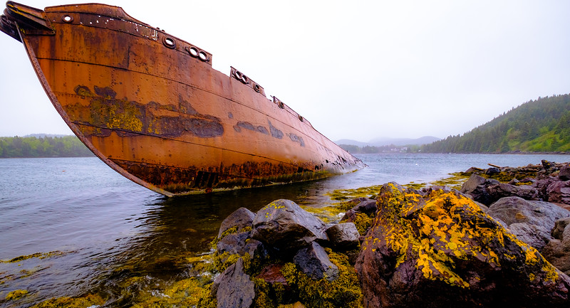 Shipwreck in Conception Cove on a cool, rainy foggy day.