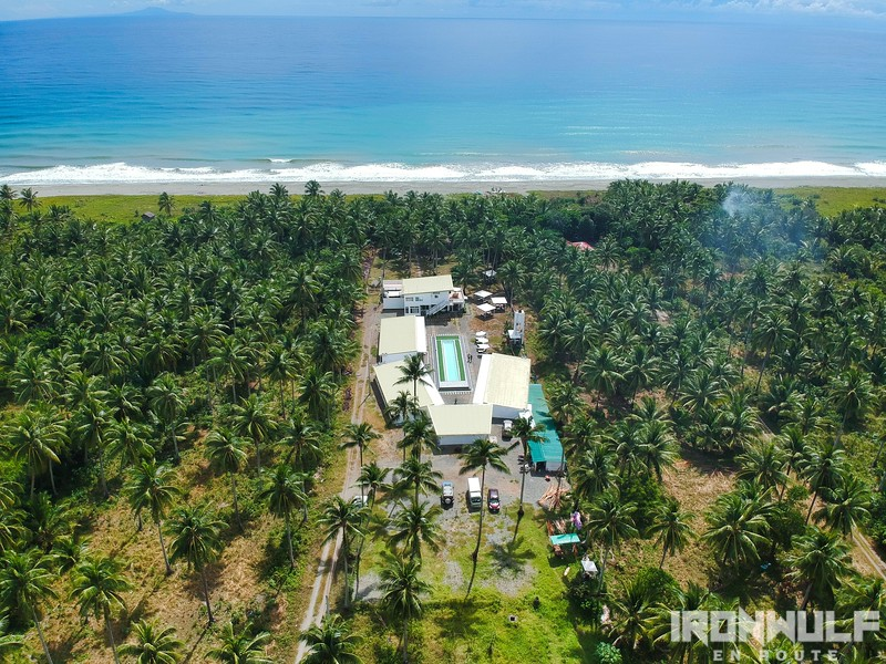 Resort surrounded by coconut trees