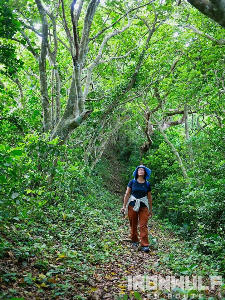 Adventure-lover Ivatan, Bing