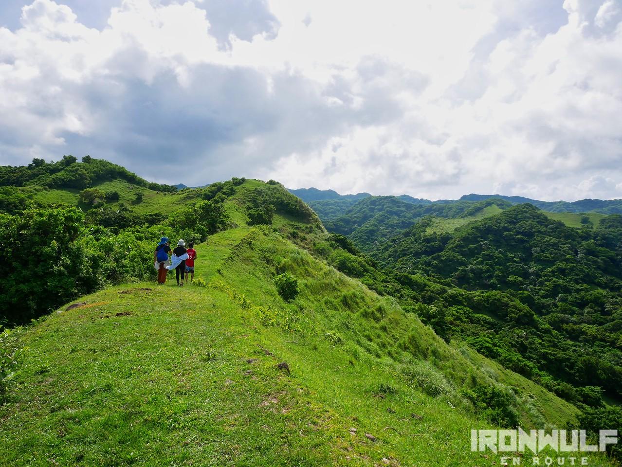Pasture land open trail