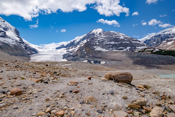Wandering around the glacial retreat debris; this area was covered in ice until about 1915.