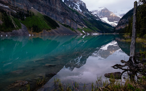 Still waters as the head of Lake Louise comes into view.