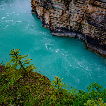 Brilliant blue outlet of the Athabaska River from the channels at the falls.