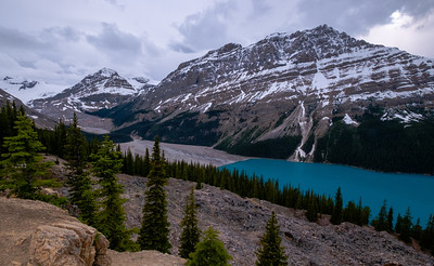 Cool afternoon view of the head of Peyto Lake from Bow Summit.