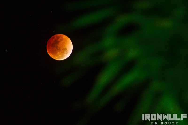 Super blue blood moon night at the Farmhouse by EDL