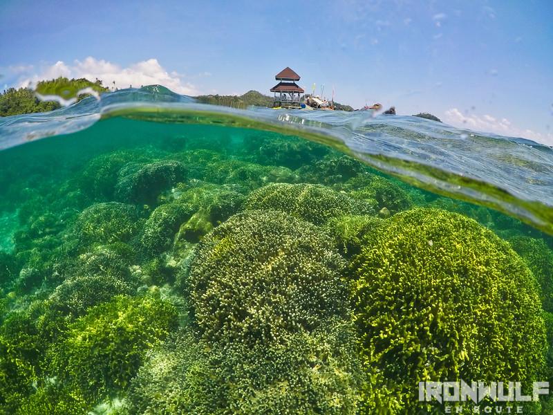 Snorkeling at Tagbak Marine Park