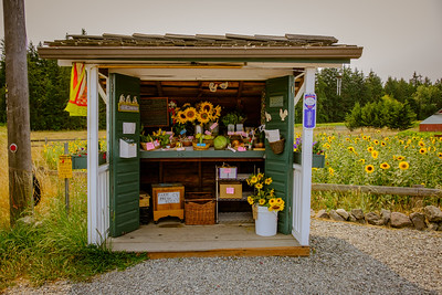 Farm Stand in Sequim, WA