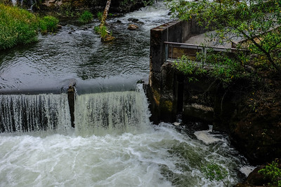 At Tumwater Falls