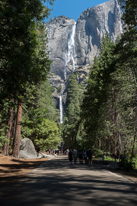 Upper and Lower Yosemite Falls.