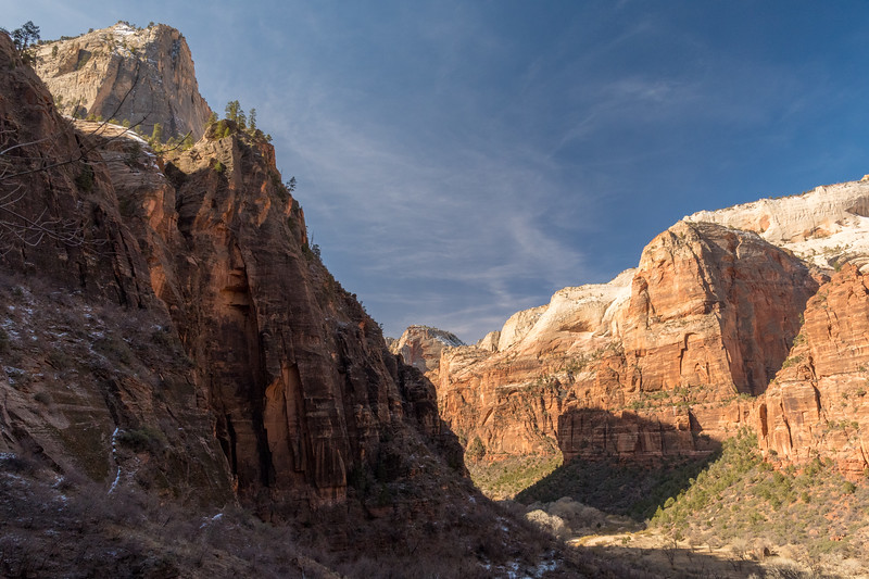 View from the trail to Observation Point, which begins at river level, in Zion National Park.