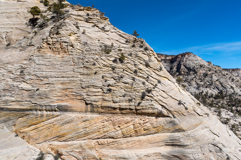 Interesting patterns in a cliff seen from the trail to Observation Point, Zion National Park.