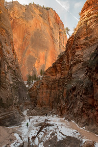 The trail to Observation Point follows a slot canyon, Zion National Park.