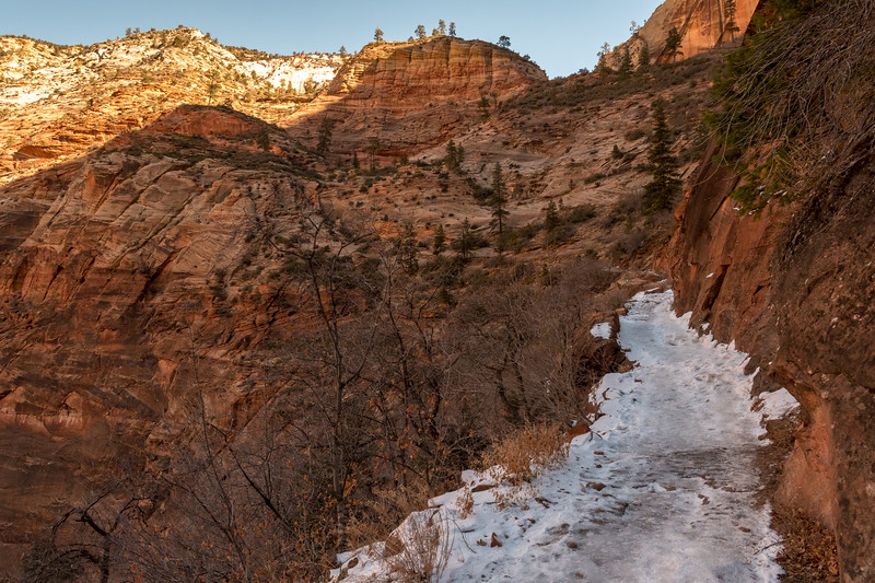 Snow and ice on trail to Observation Point, Zion National Park.