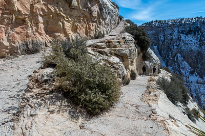 Hikers on the paved switchbanks of trail to Observation Point, Zion National Park.