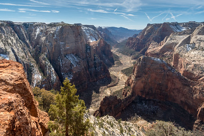 View from Observation Point, with the fin of Angel's Landing at center; Zion National Park.