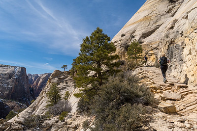 Hikers on the trail to Observation Point, Zion National Park.