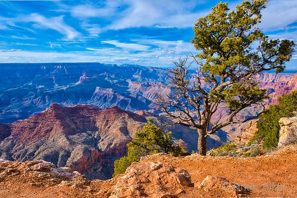 2019-04-Grand Canyon South Rim