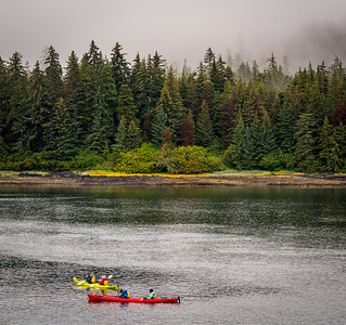 Travel through Fredrerick Sound reaching Kuiu Island, visiting the the Tide Pools during the low tide on Kuiu IslandUncruise in Inside Passage of Alaska on Safari Endeavour, Sep 2-8th, 2019.