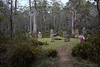 Tasmanian Stonehenge