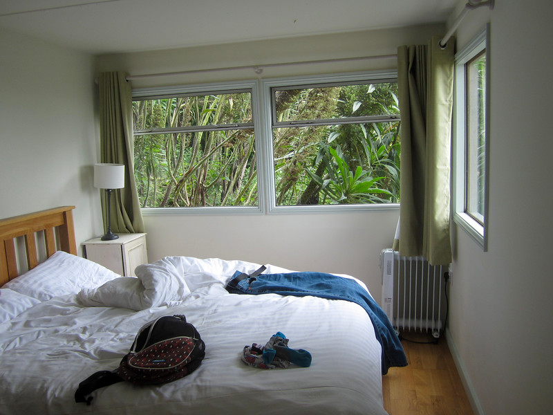 AirBNB bedroom with Echium plants scratching on the windows.
