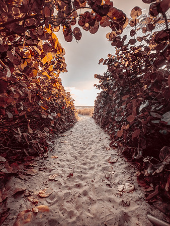 Juno Beach in the morning