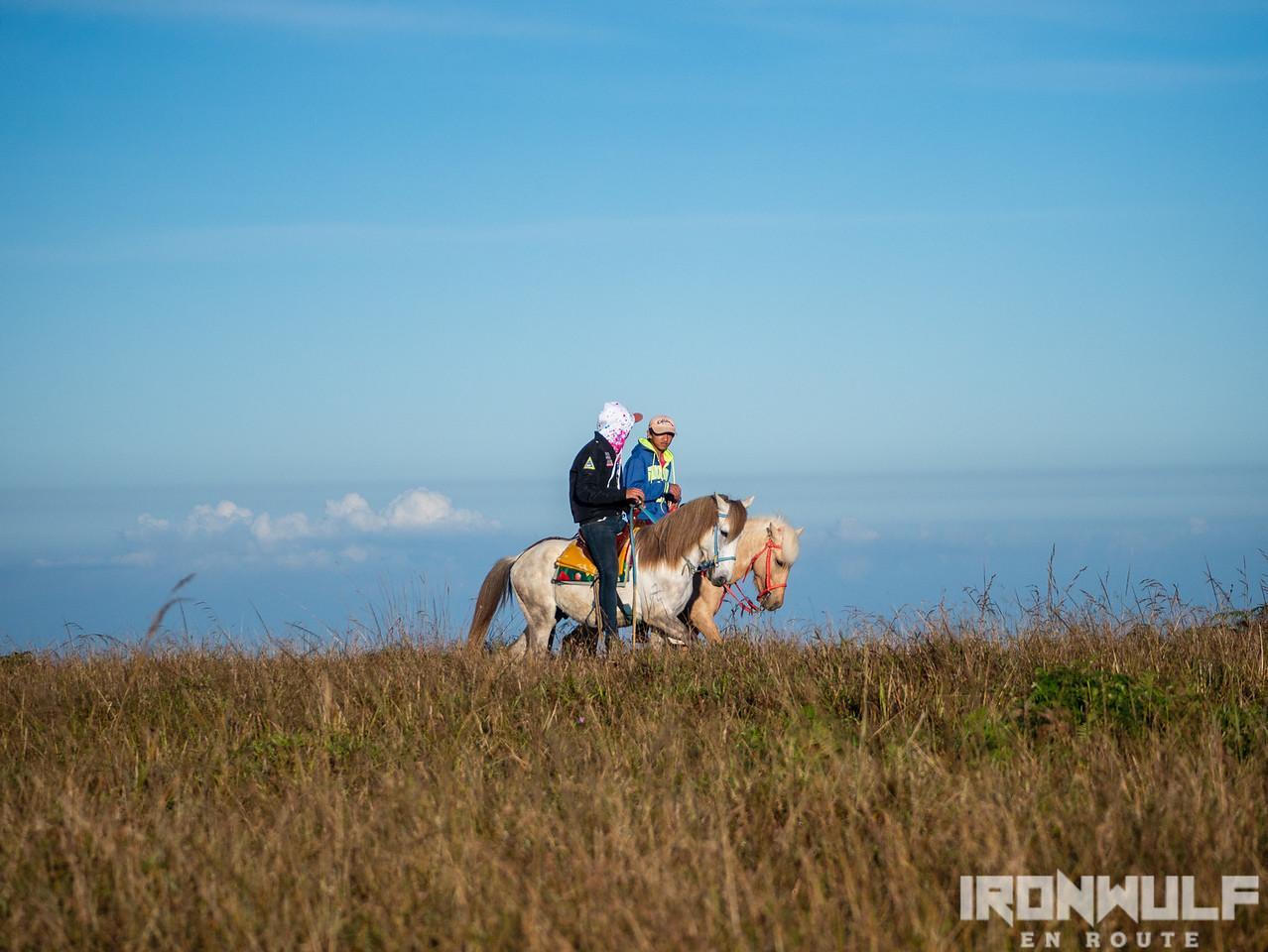 Horseback riding at the summit