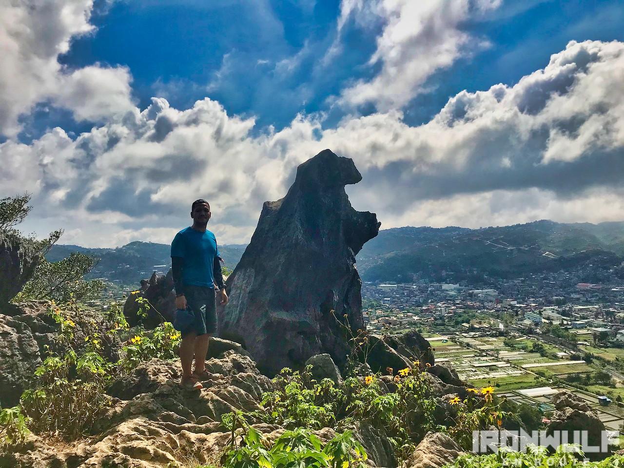 The Lion's rock