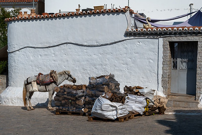 A horse waits for work near bundles of firewood in Hydra, Greece.
