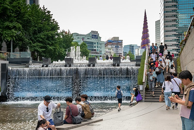 Seoul has developed a pleasant waterside park along one of the creeks that flows through the center of the city