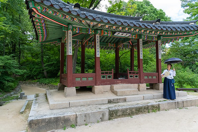 Tour of the secret gardens at Changdeokgung Palace in Seoul.